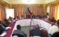 AU delegation assesses needs in Wau