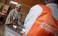Southern Kordofan elections kick off