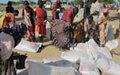Twic County commissioner urges assistance for Abyei IDPs
