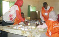 Ballot counting starts in Southern Kordofan