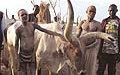 Pride of the Dinka Bor