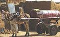 Transport on four legs